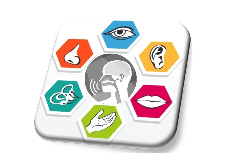 Zaburzenia mowy o podłożu sensorycznym